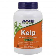 나우 Now, Kelp 150 mcg, 200 타블렛